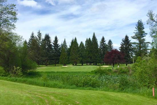 Chehalis, WA: Awesome fairways and greens!