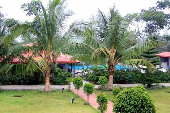 Sakleshpur, Indien: Hotel grounds