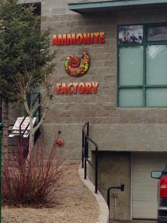 Ammonite Factory
