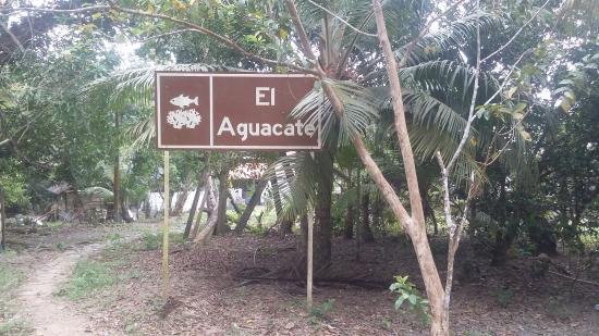 Bahia el Aguacate: despúes de la caminata por fin llegamos