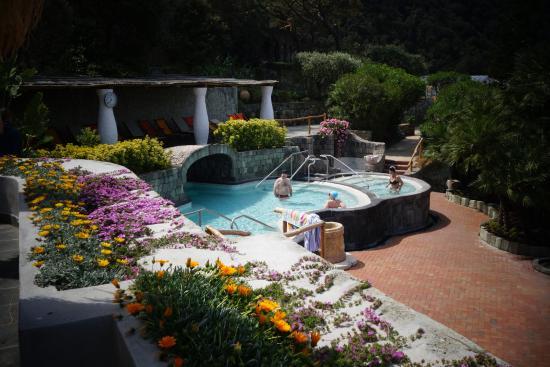 Bagno Giapponese Terme Ischia : Piscina ischia 34° foto di giardini poseidon terme forio