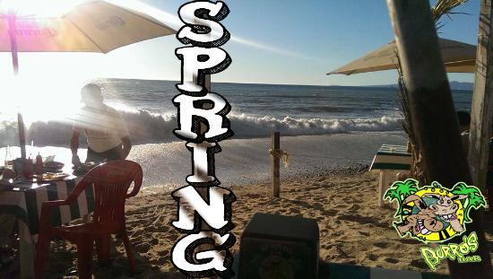 BURROS BAR & RESTAURANT: spring time