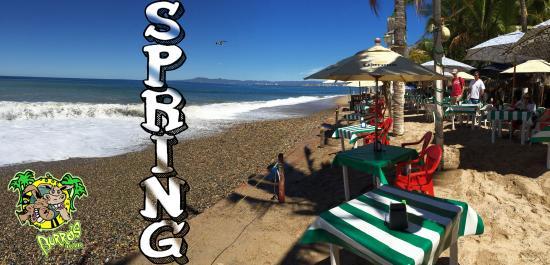 BURROS BAR & RESTAURANT: spring season