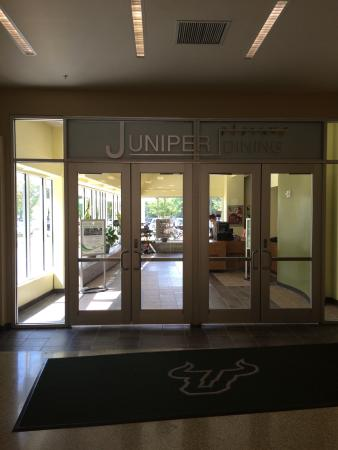 ‪USF Juniper Dining‬
