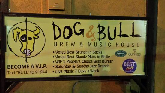 Croydon, Pensilvania: Dog & Bull Brew & Music House