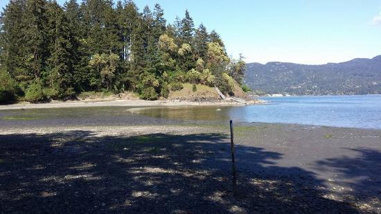 Judd Cove Preserve