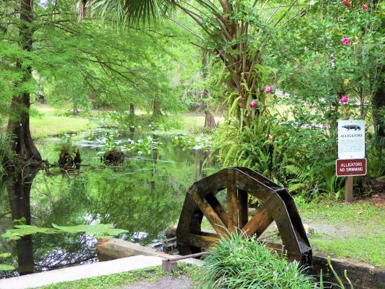 Palatka, Floryda: Beautiful pond and water wheel
