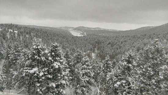 Cascade, CO: IMAG1936_large.jpg