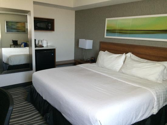 Holiday Inn Winnipeg - Airport West: photo1.jpg