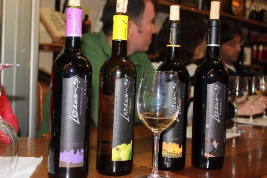 Bodegas Lezaun: Los vinos