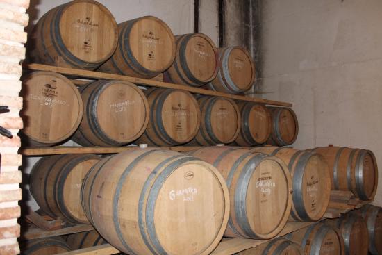 Navarra, Spain: Las cubas