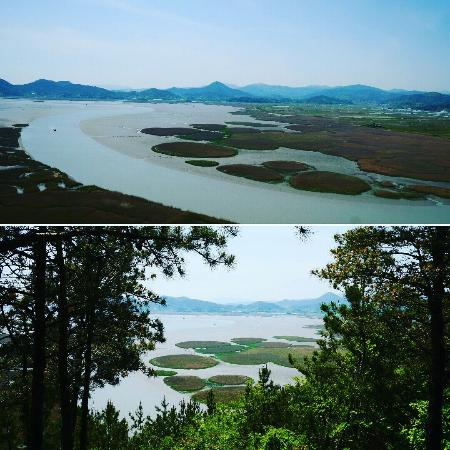 Suncheon, Южная Корея: IMG_20160501_191001_large.jpg