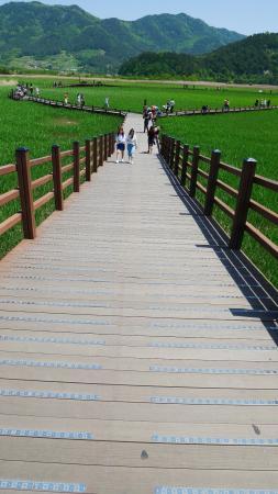 Suncheon, Южная Корея: 1280690_large.jpg