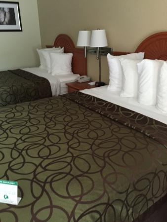 BEST WESTERN of Murphy : our room
