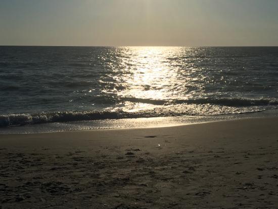 Венеция, Флорида: photo1.jpg