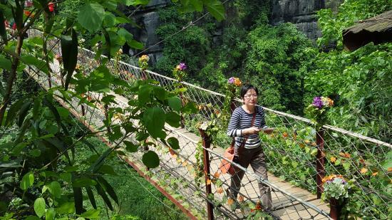 Butterfly Spring Park: good swinging bridge
