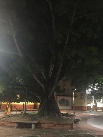Barrancabermeja 사진