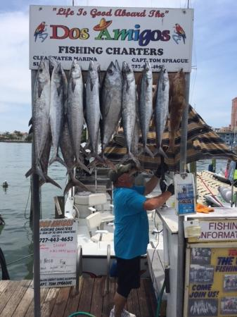 Dos Amigos Fishing Charters Photo
