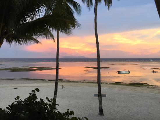 Anda White Beach Resort: Sunset view from our front porch