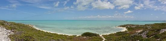 The stunning beach, cleanest water and beautiful people of South Caicos. Get up at least once at