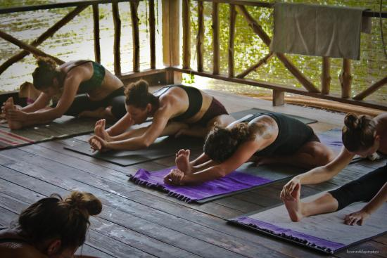 The Yoga Retreat