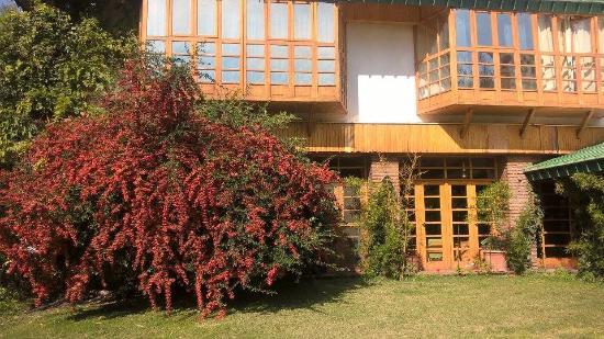 Termas Cacheuta - Terma Spa Full Day: restorán