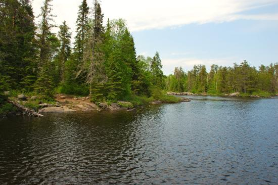 Ely, MN: Surrounding our campsite. The wether was beautiful.