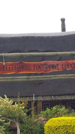 Elephants Footprint Lodge: 20160430_082244_large.jpg