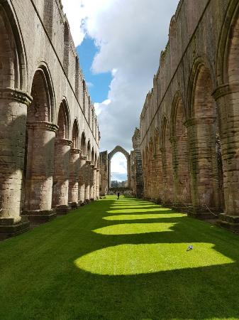 Fountains Abbey and Studley Royal Water Garden: 20160430_115003_large.jpg