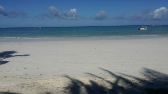 Diani Blue: 20160501_152702_large.jpg