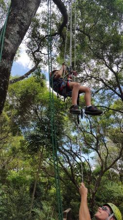 Treeco Climbing Adventures
