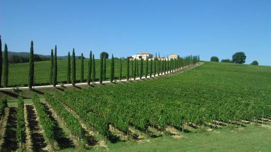 Umbria Wine Tour