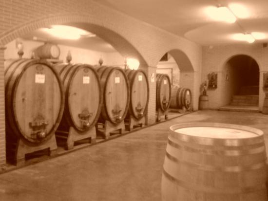 Tordandrea, Italia: a neat cellar is a must