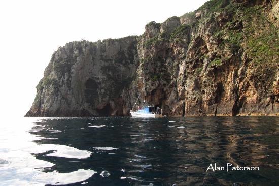 Tutukaka, Yeni Zelanda: Another great dive site