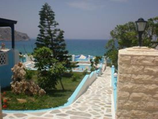 Pool - Picture of Eleni Studios, Kárpathos - Tripadvisor