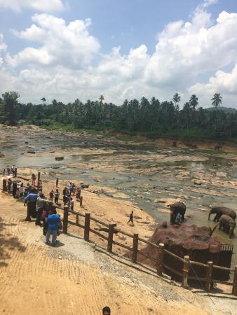 Foto de Hotel Elephant Park