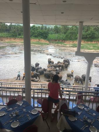 Hotel Elephant Park Φωτογραφία