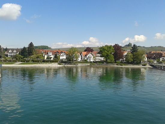 Apart Rosengarten: Blick vom Schiff auf Immenstaad