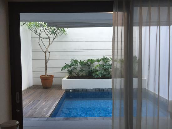 The Magani Hotel and Spa: Private pool in premier pool room