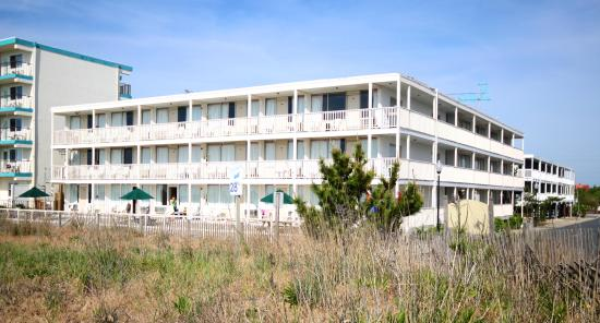 Seabonay Motel: just steps from the beach