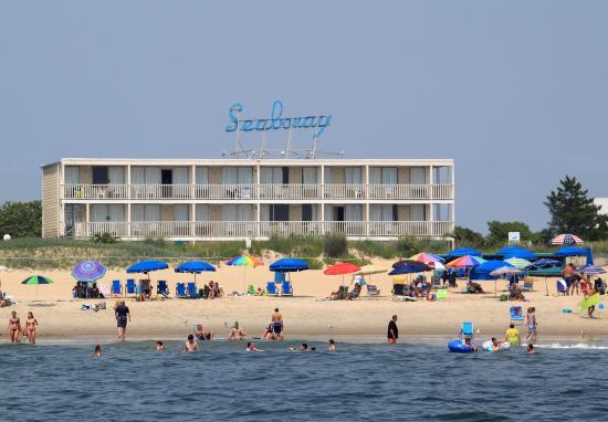 Seabonay Motel: stay oceanfront. stay seabonay.