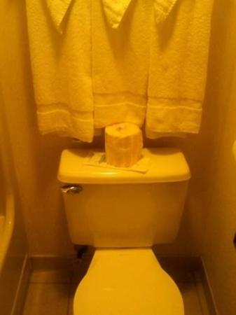 South Boston, VA: Bathroom