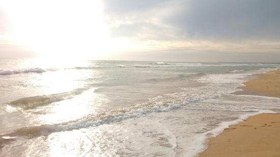 Paraiso surfero - Picture of Playa El Palmar, Vejer de la Frontera - TripAdvisor