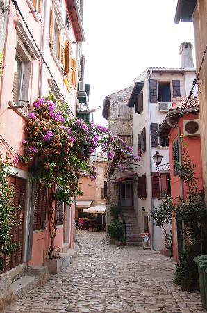 Trevisol Street