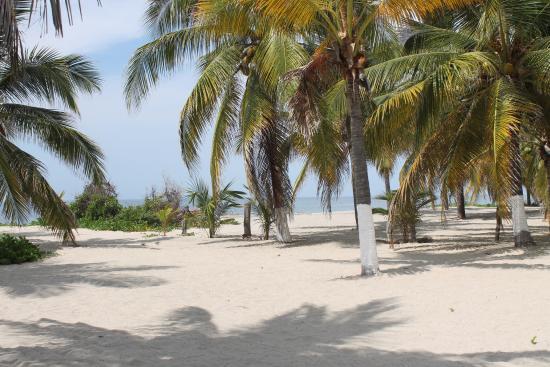 Laguna de Manialtepec: Deserted beach