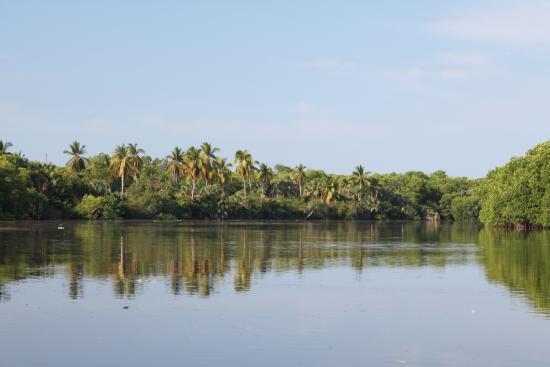 Laguna de Manialtepec: Lagoon