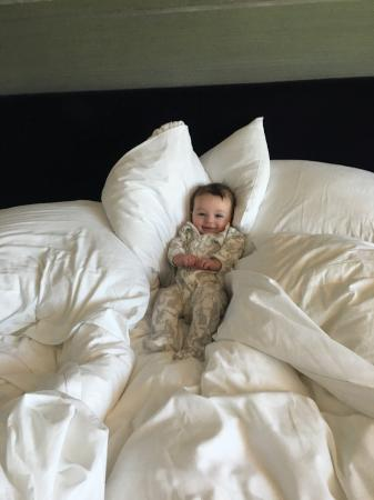Loews Hollywood Hotel: A very comfy bed with too many pillows to count