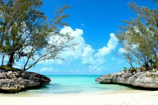 Image result for cat island bahamas