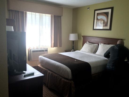 BEST WESTERN York Inn Bild