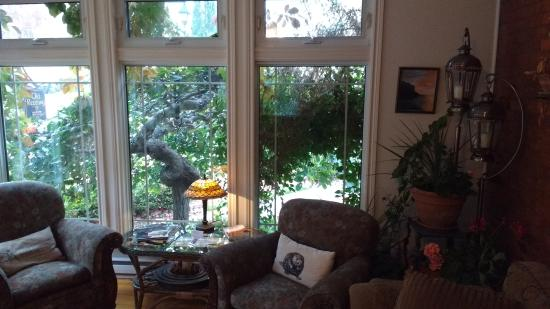 The Old Rectory: Cozy up by the old tree for a quiet read in the sunroom.